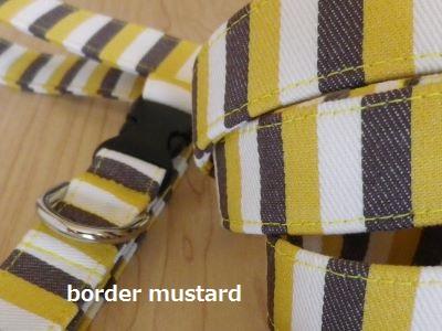 画像4: border mustard