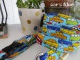 car's blue