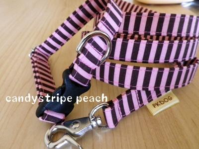 画像1: ★candy stripe peach